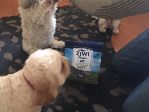The ULTIMATE Dog Food